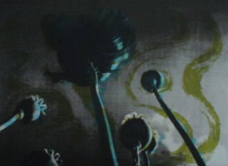 Poppies II.Grey Sky
