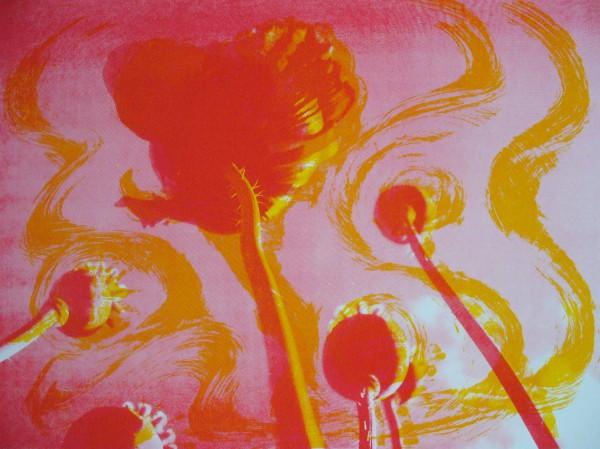 Poppies II Sunshine. Sold