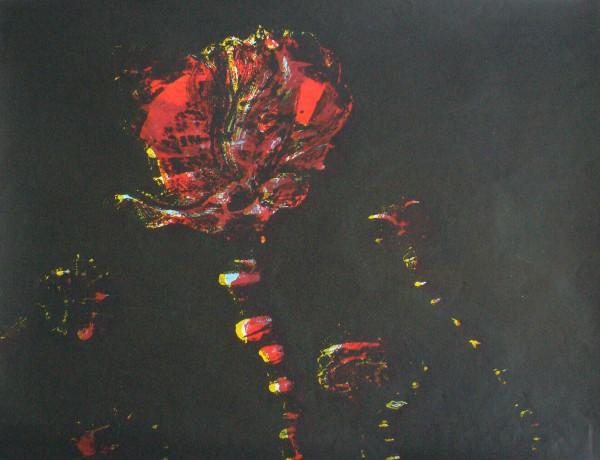Poppies II Tartan