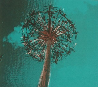 Allium blue. Screen print