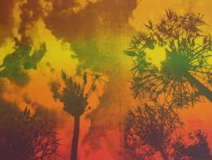 Alliums heat Screen print