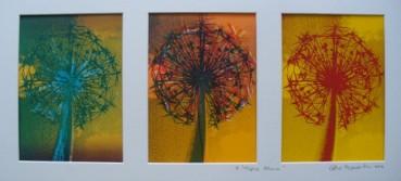 Triple Allium